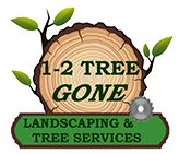 Landscaping and tree services