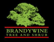 Brandywine Tree and Shrub
